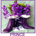 whose shoes shoe Prince Purple Rain
